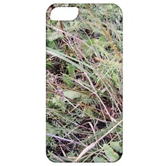 Linaria Grass Pattern Apple Iphone 5 Classic Hardshell Case