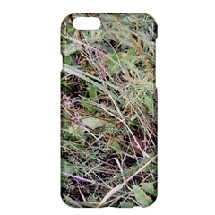 Linaria Grass Pattern Apple iPhone 6 Plus Hardshell Case