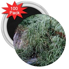 Rustic Grass Pattern 3  Button Magnet (100 Pack)