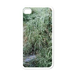 Rustic Grass Pattern Apple Iphone 4 Case (white)