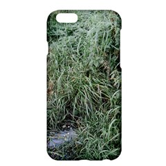 Rustic Grass Pattern Apple Iphone 6 Plus Hardshell Case