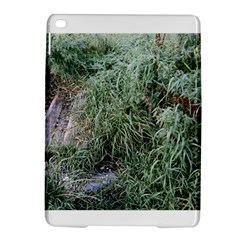 Rustic Grass Pattern Apple iPad Air 2 Hardshell Case