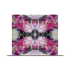 Natureforces Abstract Plate Mats
