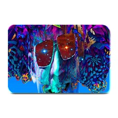 Voyage Of Discovery Plate Mats