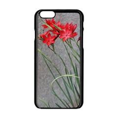 Red Flowers Apple iPhone 6 Black Enamel Case
