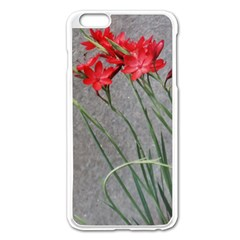 Red Flowers Apple iPhone 6 Plus Enamel White Case
