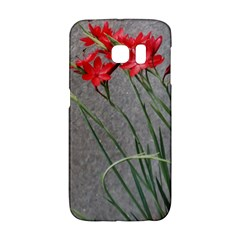 Red Flowers Galaxy S6 Edge