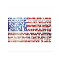 USA States Flag Small Satin Scarf (Square)