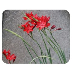 Red Flowers Double Sided Flano Blanket (Medium)