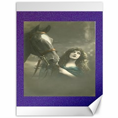 Vintage Woman With Horse Canvas 36  X 48