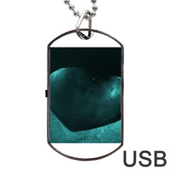 Teal Heart Dog Tag Usb Flash (one Side)