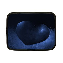 Blue Heart Collection Netbook Case (small)
