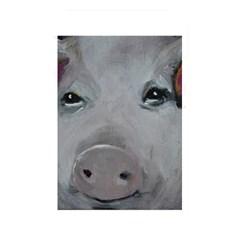Piggy No  1 Memory Card Reader
