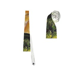 Mustang Neckties (two Side)