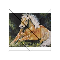 Mustang Acrylic Tangram Puzzle (4  x 4 )