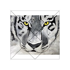 The Eye Of The Tiger Acrylic Tangram Puzzle (4  X 4 )