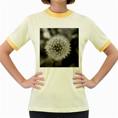 Modern Daffodil Seed Bloom Women s Fitted Ringer T-Shirts