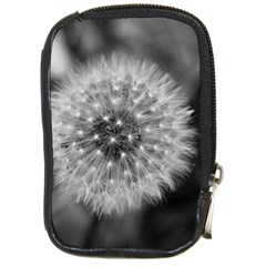 Modern Daffodil Seed Bloom Compact Camera Cases