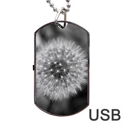 Modern Daffodil Seed Bloom Dog Tag USB Flash (One Side)