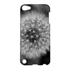 Modern Daffodil Seed Bloom Apple Ipod Touch 5 Hardshell Case