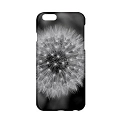 Modern Daffodil Seed Bloom Apple iPhone 6 Hardshell Case