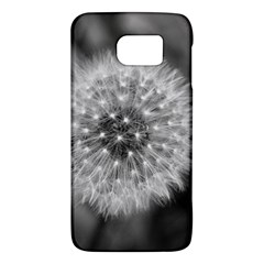 Modern Daffodil Seed Bloom Galaxy S6