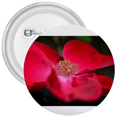 Bright Red Rose 3  Buttons
