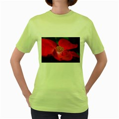 Bright Red Rose Women s Green T-Shirt