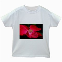 Bright Red Rose Kids White T-Shirts