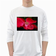 Bright Red Rose White Long Sleeve T-Shirts