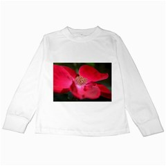 Bright Red Rose Kids Long Sleeve T Shirts