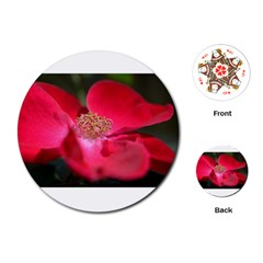 Bright Red Rose Playing Cards (round)