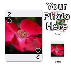 Bright Red Rose Playing Cards 54 Designs