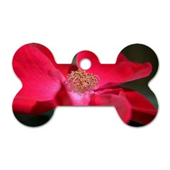 Bright Red Rose Dog Tag Bone (two Sides)