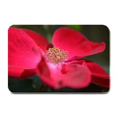 Bright Red Rose Plate Mats