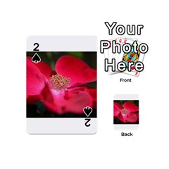 Bright Red Rose Playing Cards 54 (mini)