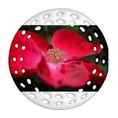 Bright Red Rose Round Filigree Ornament (2Side)
