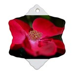 Bright Red Rose Snowflake Ornament (2-Side) Front