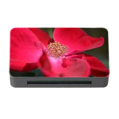 Bright Red Rose Memory Card Reader With Cf