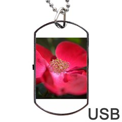 Bright Red Rose Dog Tag Usb Flash (two Sides)