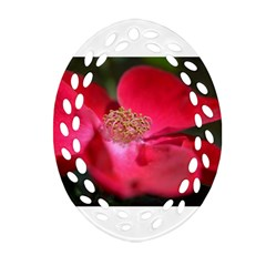 Bright Red Rose Oval Filigree Ornament (2 Side)