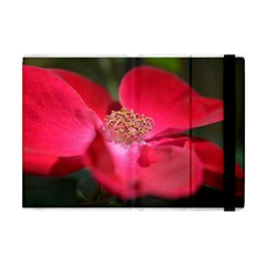 Bright Red Rose Apple Ipad Mini Flip Case