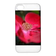 Bright Red Rose Apple Iphone 4/4s Hardshell Case With Stand