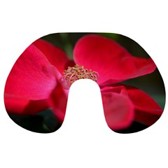 Bright Red Rose Travel Neck Pillows