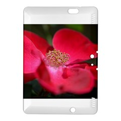 Bright Red Rose Kindle Fire Hdx 8 9  Hardshell Case