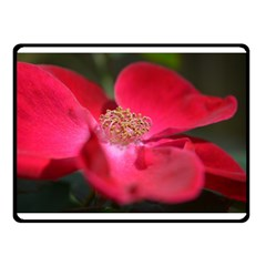 Bright Red Rose Double Sided Fleece Blanket (small)