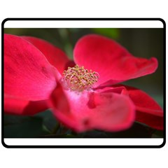 Bright Red Rose Double Sided Fleece Blanket (Medium)