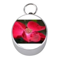 Bright Red Rose Mini Silver Compasses