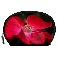Bright Red Rose Accessory Pouches (Large)