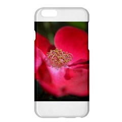 Bright Red Rose Apple iPhone 6 Plus Hardshell Case